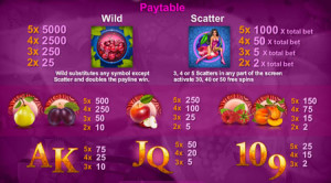 Cherry Fiesta paytable
