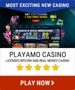 Playamo Most exciting new casino