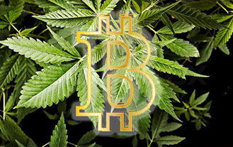 Bitcoin Blockchain Cannabis Revolution
